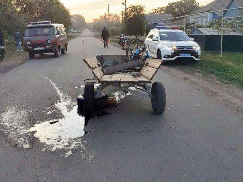 Во Врадиевке подросток на мотоцикле врезался в мотоблок (ФОТО)