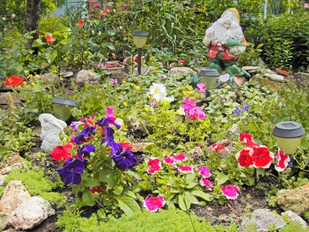 В Заводском районе стартовал очередной проект «Городские цветы. Лето-2020» (ФОТО)