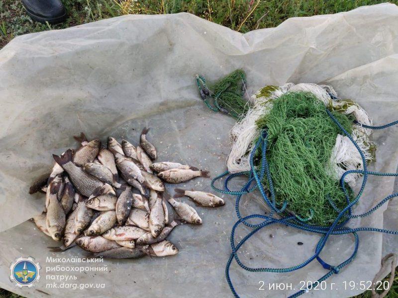 Несмотря на запрет, на Николаевщине браконьеры ловят рыбу сетями (ФОТО, ВИДЕО)