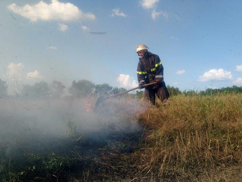 Николаевская область: спасатели ликвидировали 4 пожара на открытой территории площадью 4 тыс. м. кв. (ФОТО)