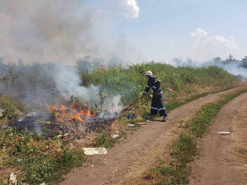 За сутки на Николаевщине четырежды горела сухая трава (ФОТО)