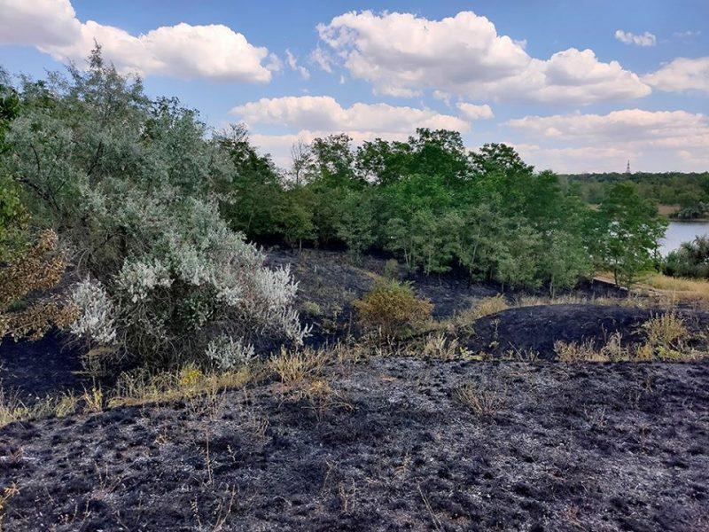 Из-за любителей пикников на Николаевщине в урочище «Водяном» выгорело 0,9 га травяной подстилки (ФОТО)