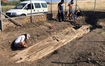 Археологи нашли в Греции дерево возрастом 20 миллионов лет (ФОТО)