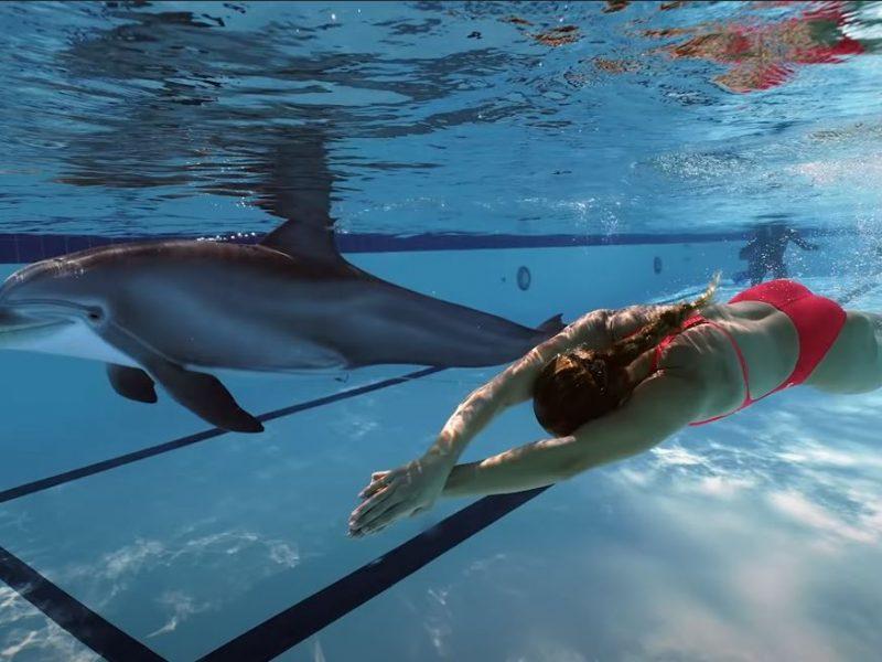 Очень похож на живого! Инженеры показали робота-дельфина – таких хотят продавать океанариумам (ВИДЕО)