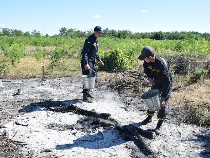 В Новоодесском районе вычислили поджигателя – развел 50 костров (ФОТО, ВИДЕО)