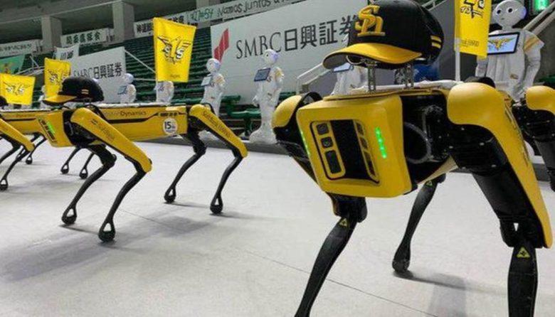 Паника на улицах Гонолулу: полиция использовала роботов Boston Dynamics для работы с бездомными