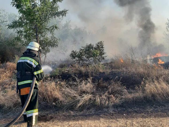 На Николаевщине за сутки выгорело более 2 га открытых территорий (ФОТО)
