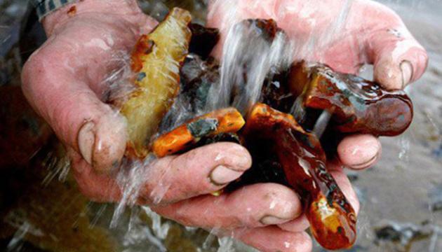 В Житомирской области с аукциона продадут 23 участка на добычу янтаря