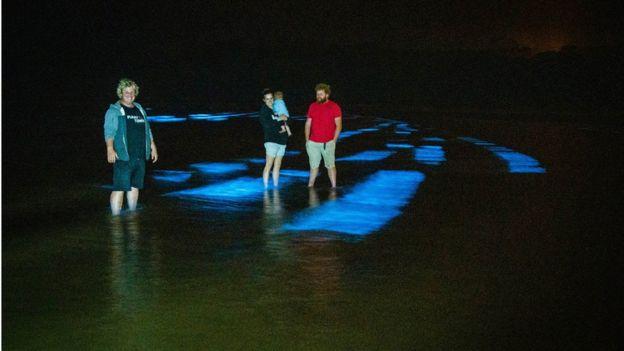Ночные посетители пляжа в Ирландии увидели редкое природное светошоу (ФОТО)
