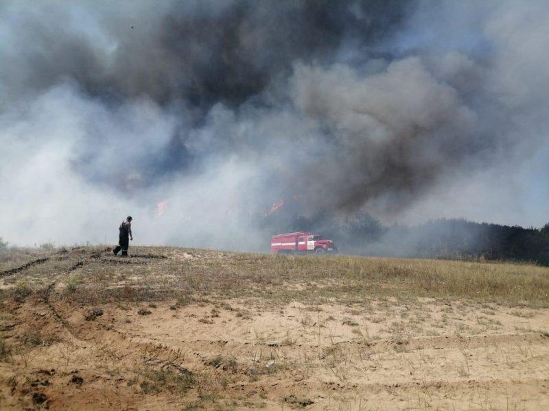Под Николаевом горит сухая трава – пожар рисковал перекинуться на дачи и Галициновское урочище (ФОТО)