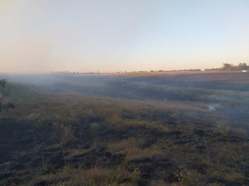 Спасатели Николаевщины потушили 16 пожаров в экосистемах за сутки (ФОТО)