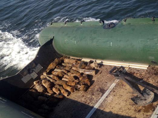 На Николаевщине благодаря мужчине пиротехники обнаружили почти полсотни снарядов (ФОТО)