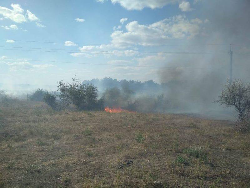 Пожарные потушили хвойную подстилку в урочище на Николаевщине