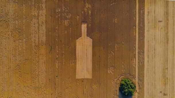 Джин? Под Киевом на поле появилась фигура гигантской бутылки (ФОТО)