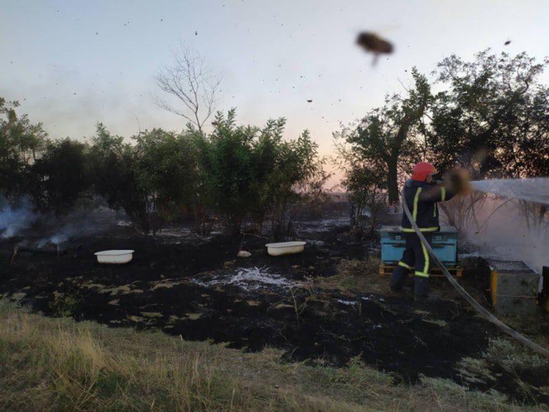 На Николаевщине выгорело 13 га открытых территорий. Вместо с 93 уликами и прицепом для их транспортировки (ФОТО)