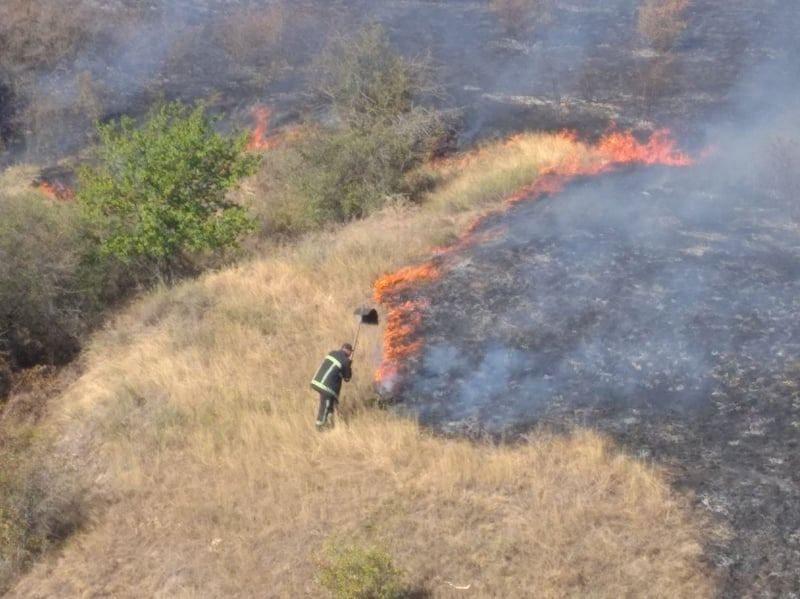 В Николаевской области тушат пожар площадью 23 га (ФОТО, ОБНОВЛЕНО)