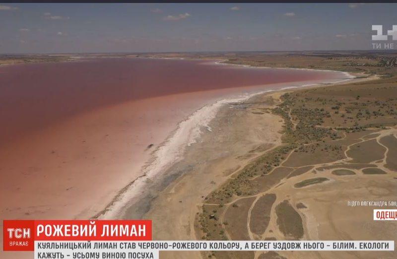 Куяльницкий лиман под Одессой стал розовым (ВИДЕО)