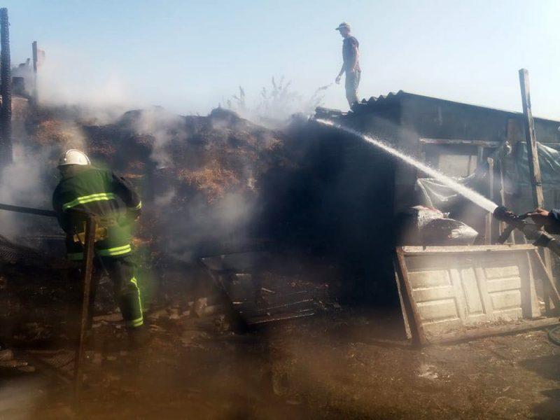 Николаевские пожарные спасли от огня 70 тонн сена (ФОТО)