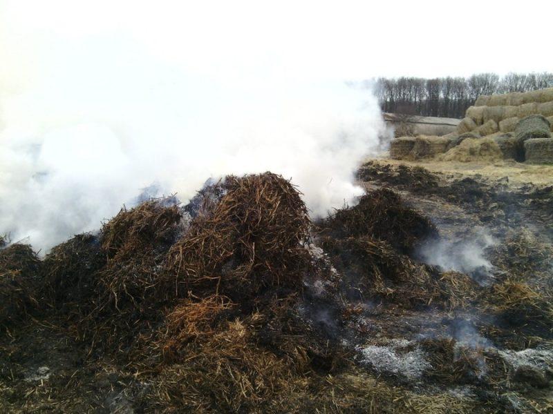 В Явкино сгорело 3 тонны соломы (ФОТО)