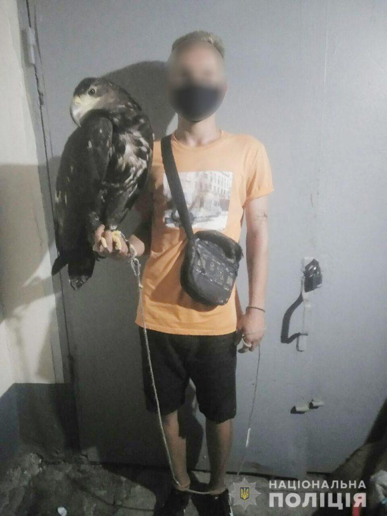 И местные издеваются, и приезжие: николаевская полиция расследует факты жестокого обращения с животными в Коблево (ФОТО, ВИДЕО) 3