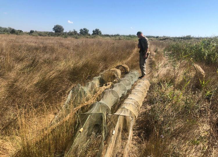 На Николаевщине пограничники выявили 140 метров браконьерских сетей (ФОТО)