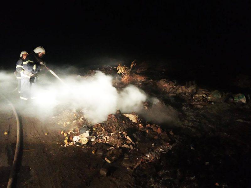 На Николаевщине неизвестные устроили большой пожар на несанкционированной свалке (ФОТО)