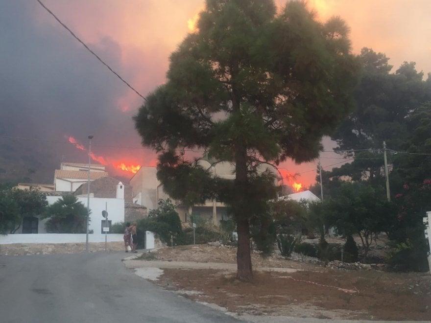 Заповедник на Сицилии уничтожен пожаром (ФОТО) 5