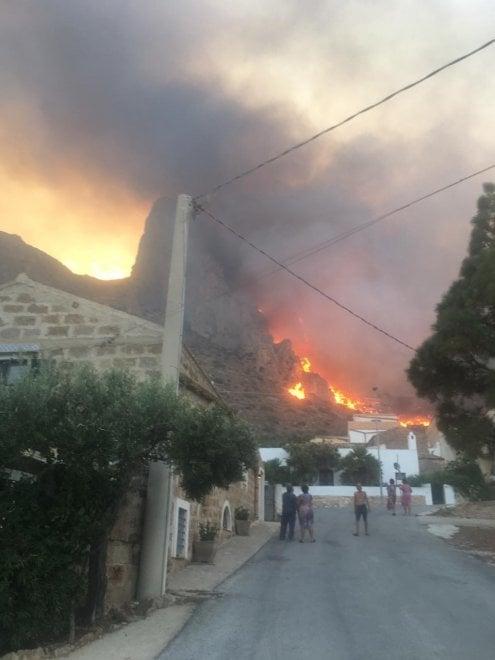 Заповедник на Сицилии уничтожен пожаром (ФОТО) 7