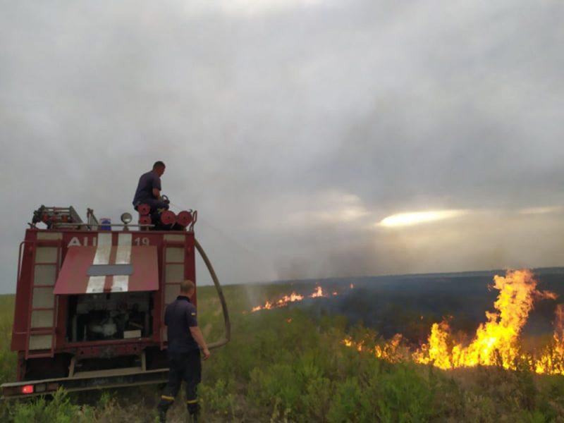 Кустарники, камыш, стерня: на Николаевщине за сутки выгорело более 21 га открытых территорий (ФОТО)