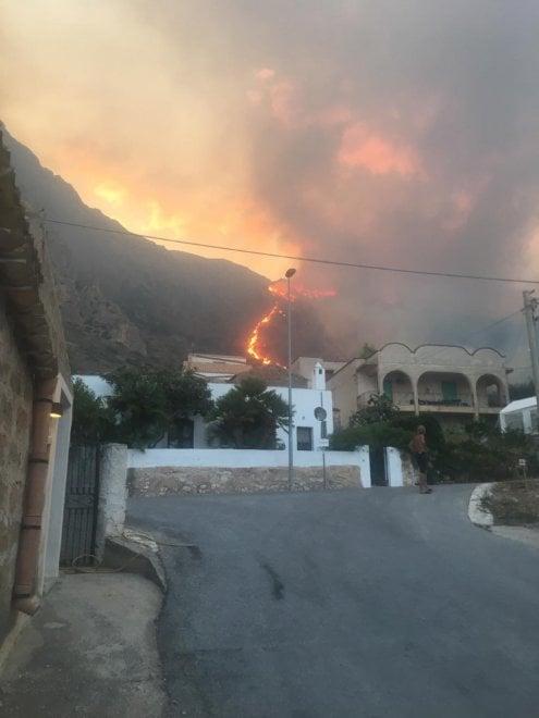 Заповедник на Сицилии уничтожен пожаром (ФОТО) 9