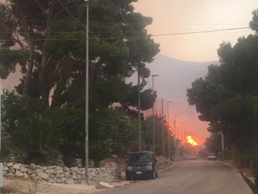 Заповедник на Сицилии уничтожен пожаром (ФОТО) 13