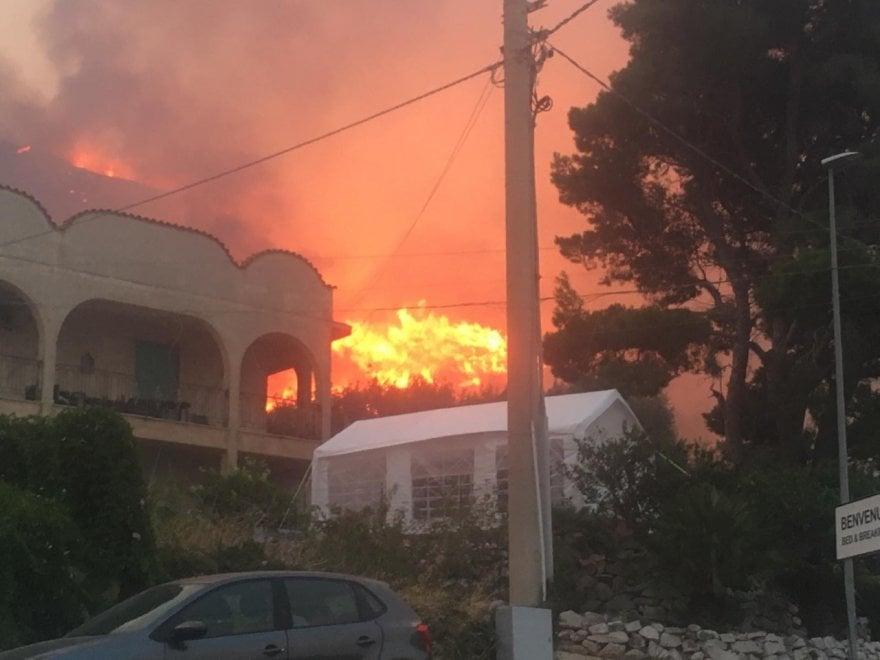 Заповедник на Сицилии уничтожен пожаром (ФОТО) 15