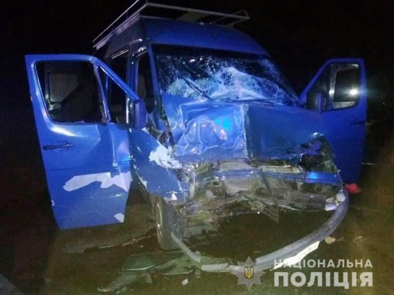 На Николаевщине столкнулись микроавтобус и грузовик – пять человек оказались в больнице (ФОТО)