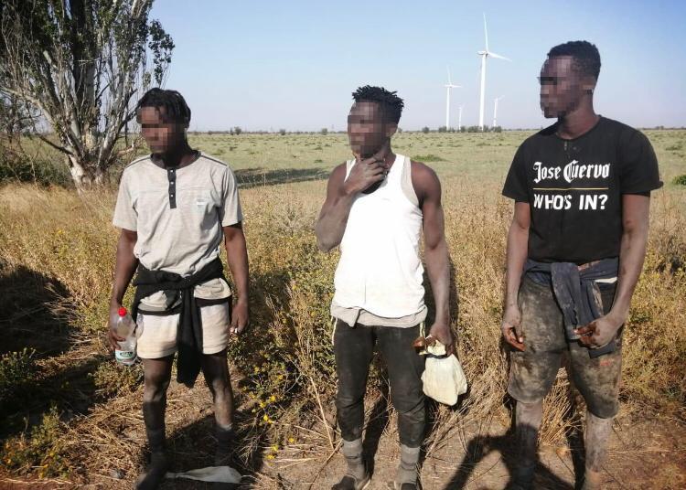 Как в кино. Нелегалы-гвинейцы добрались вплавь до очаковского берега