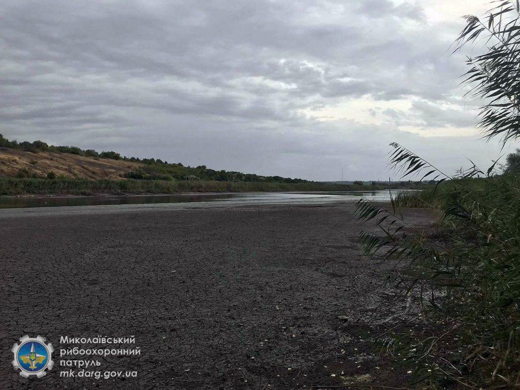 Катастрофа. Из-за ремонта Первомайской ГЭС погибли миллионы рыб, город остался без воды (ФОТО, ВИДЕО) 11