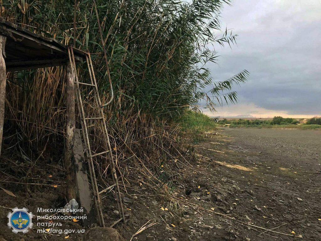 Катастрофа. Из-за ремонта Первомайской ГЭС погибли миллионы рыб, город остался без воды (ФОТО, ВИДЕО) 15
