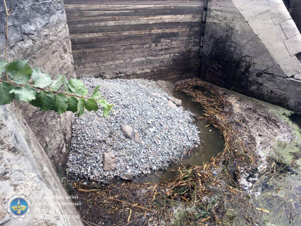 Катастрофа. Из-за ремонта Первомайской ГЭС погибли миллионы рыб, город остался без воды (ФОТО, ВИДЕО) 5