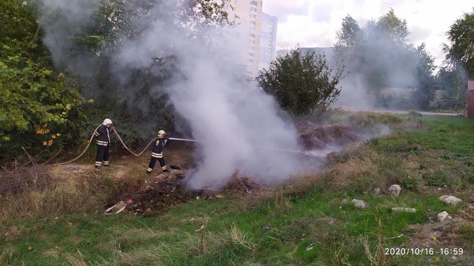 Николаевские спасатели тушили пожар в Балабановском урочище (ФОТО) 1