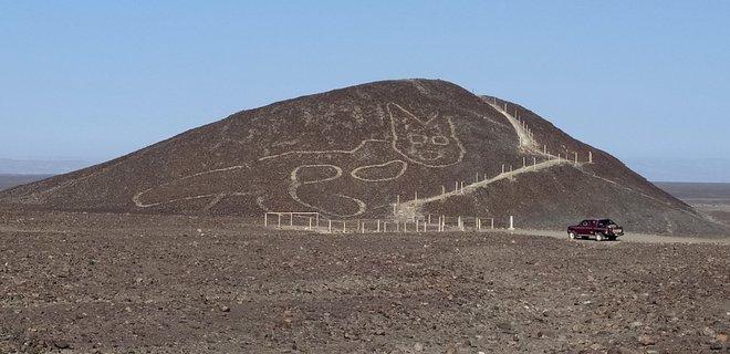 Они тоже любили котиков: в Перу нашли новый геоглиф (ФОТО)