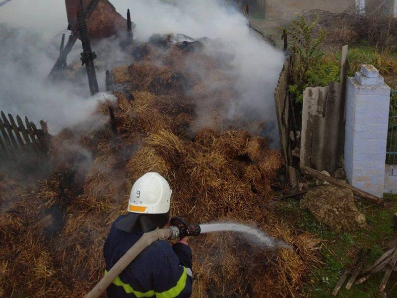 Как корова языком слизала: 6 тонн сена и соломы сгорели, но пожарным Николаевщины отстояли дом и хозпостройку (ФОТО)
