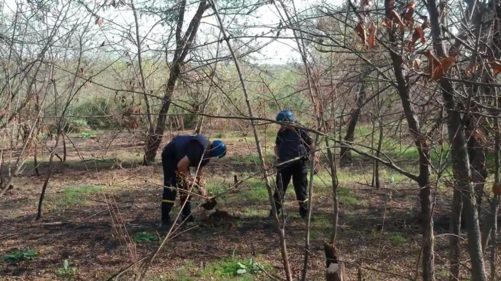 На Николаевщине обезвредили винтовочные гранаты (ФОТО, ВИДЕО) 1