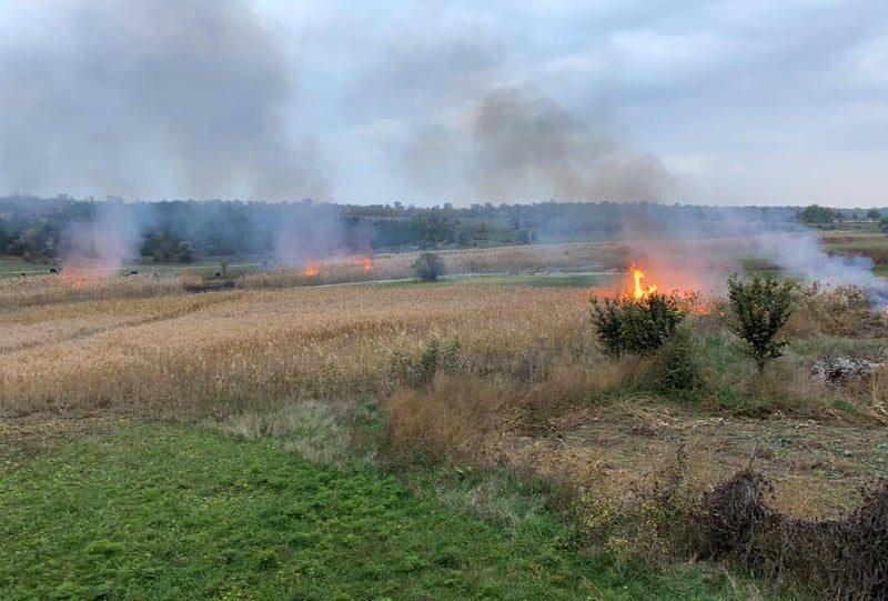 На Николаевщине продолжаются поджоги – спасателям пришлось тушить огромный пожар камыша