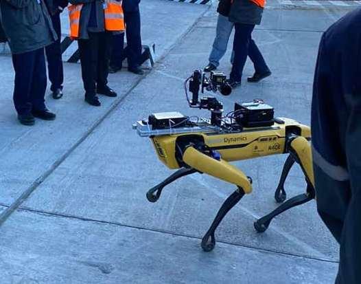 В Чернобыле впервые испытали робота-пса для замера радиации (ФОТО, ВИДЕО)