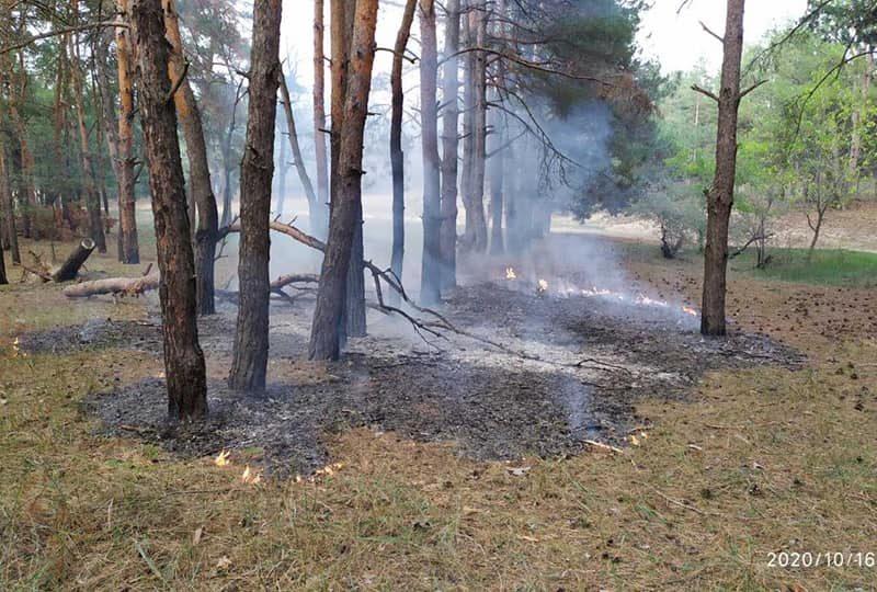 Николаевские спасатели тушили пожар в Балабановском урочище (ФОТО)