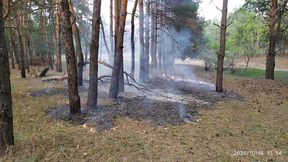 Николаевские спасатели тушили пожар в Балабановском урочище (ФОТО) 3