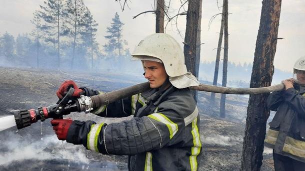 Пожары на Луганщине: потушены два очага (ФОТО, ВИДЕО) 9