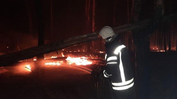 Пожары на Луганщине: потушены два очага (ФОТО, ВИДЕО) 7
