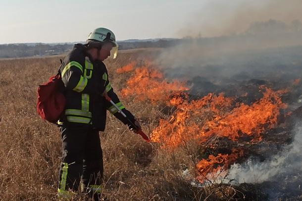 Пожары на Луганщине: потушены два очага (ФОТО, ВИДЕО) 3