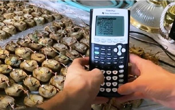 В Doom сыграли на картофельном калькуляторе (ВИДЕО)