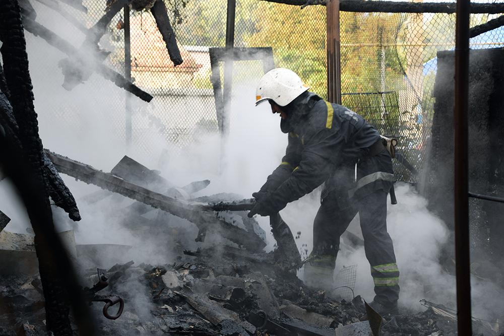 В Широкой Балке горел дачный домик (ФОТО, ВИДЕО) 5